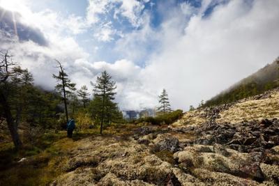 Спуск в долину Апсата ягель, лиственница, облака, солнце