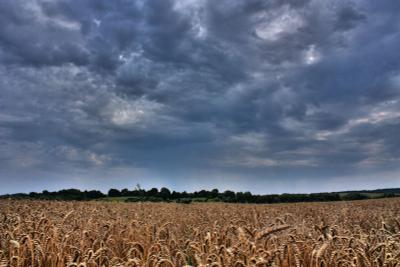 Ukraine поле, облака
