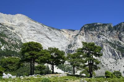 Вид на горы Бабадаг со стороны плато. Турция