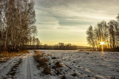 ***Новый день пейзаж рассвет утро лес дорога