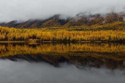 НАСТРОЕНИЕ - ОСЕНЬ 3. Забайкалье Осень Лиственница Кодарский Хребет Озеро