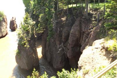 Берег атлантического океана ... Скалы деревья вода ..