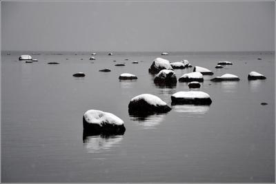 Пейзаж в три тона Балтика Финский залив Устье