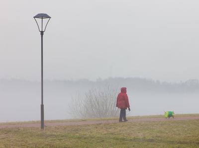 """""""молочные реки, кисельные берега"""" город туман парк залив апрель"""