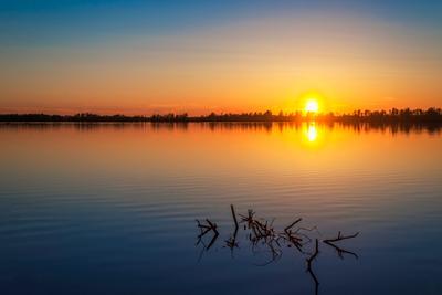 закат закат солнце весна вода озеро небо