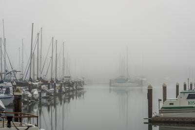 ***Утренний туман и марина.