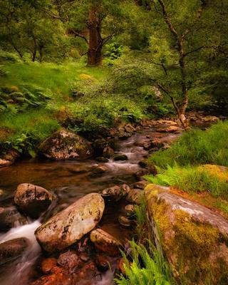 ...Glendalough creeks... ireland wicklow glendalough water river creek stream long exposure scenic nature outdoors mountains stones rocks fall current flow forest wood europe picturesque wonderful fairy tail