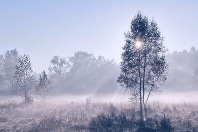 холодный рассвет сентября