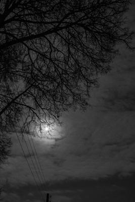 Луна,дерево,провода