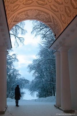 Одиночество одиночество надежда ожидание лес зима снег Россия Москва парк классика архитектура колонны деревья ветки лыжник