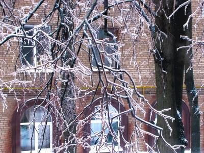 Дождливым зимним утром ледяной дождь