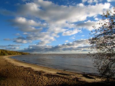 Белое озеро белое озеро липин бор вологодская область осень