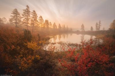 """""""Стоозерка"""" озеро Джека Лондона Магаданская область озера осень краски осени туман"""