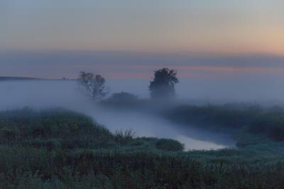 В зыбком утреннем тумане утро туман