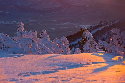 Pro дивные краски Шерегешского вечера (4) Зимний вечер краски вечера зима снег закат свет цвет тени пихты кедры Сибирь Шерегеш Горная Шория