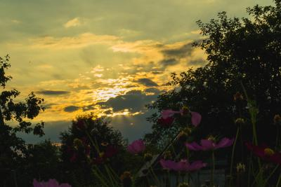 Закат закат солнце лучи