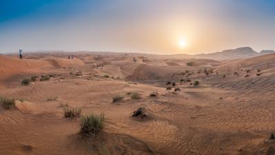 Встречаем закат в пустыне Закат пустыня песок солнце кусты барханы желтый sun sand sky blue UAE