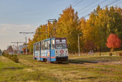Челнинский трамвай трамвай осень