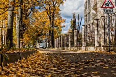Осенний переулок Видное Золотая осень