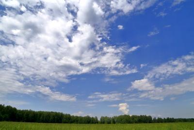 По Чеховским местам поле лето небо