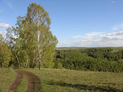 Южный Урал Янган-тау