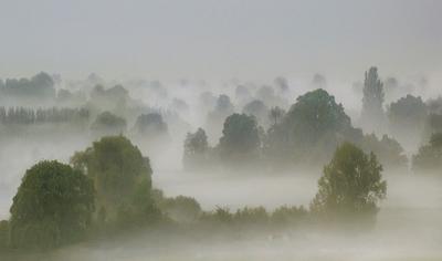 Misty Dawn on the Wentloog Levels