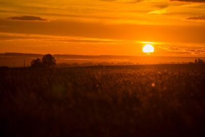 Окончание дня Закат поле солнце свет