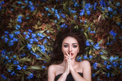 Весны голубые глаза ... пролески картина портрет синеглазка весна голубые глаза