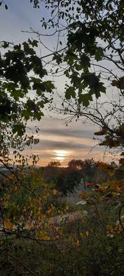*** Закат осень деревья