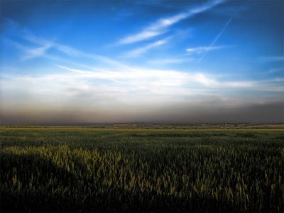 Природа рисует... небо вечер закат природа синий