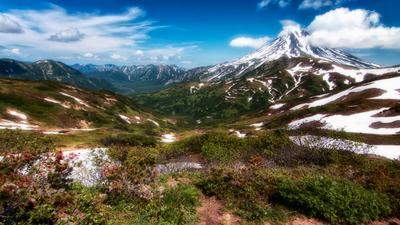 Незабываемая Камчатка. Камчатка вулканы небо снег цветы