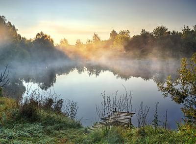 Туманное утро на пруду лето август село пруд утро туман солнце
