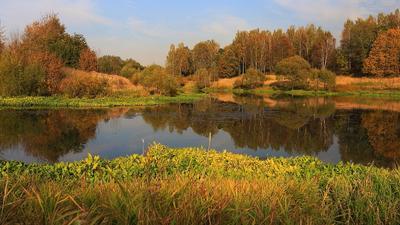 Бабье лето !!! пейзаж осень Хотьково