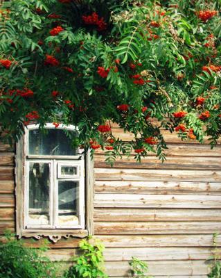 Домик с рябиной Ростов Великий дом рябина