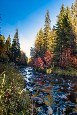 Вечер у реки природный парк Таганай Южный Урал Большой Киалим река вечер осень