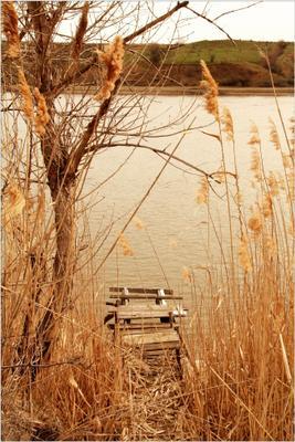 Старый рыбацкий мостик река рыбалка рыбацкий мостик осень