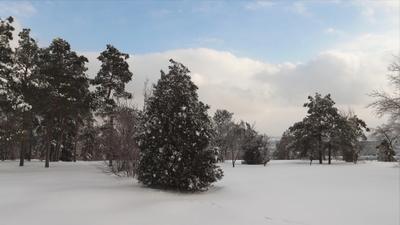 Парк Победы Зимний пейзаж в парке Парк Победа Мамаев курган Храм Всех Святых шикарная природа Зима Южный склон Город Герой
