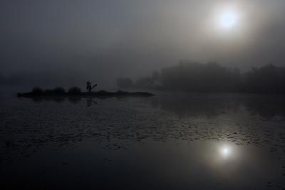 Ежик в тумане река, остров, ежик, туман