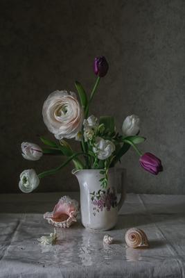 Тюльпаны, лютик и ракушки натюрморт фарфор цветы тюльпаны ракушки