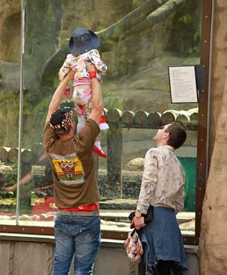 В зоопарке люди город прохожие стрит