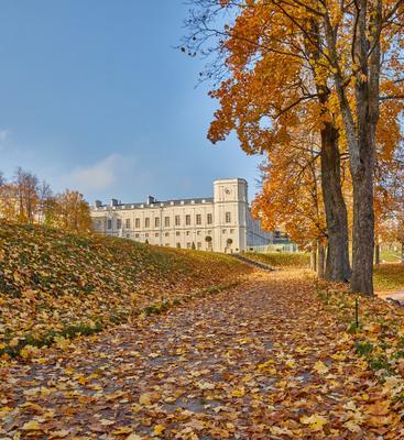 *** осень парк