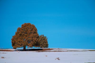 Впереди долгий путь горы зима снег природа дорога указатель ландшафт вид бельдерсай узбекистан осень деревья