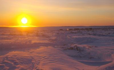 Восход в тундре Сахалин, тундра, зима, восход