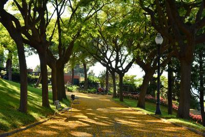 Парк на горе Монджуик