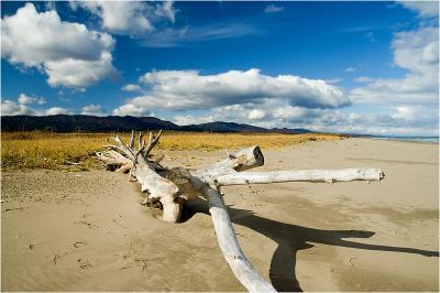 На пляже сахалин природа охотское море