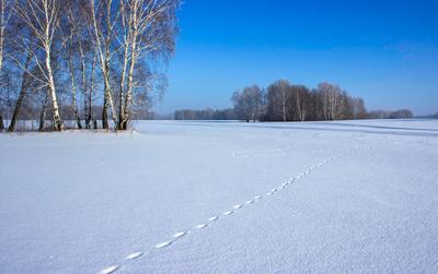*** Сибирь Сибирь зима поле снег