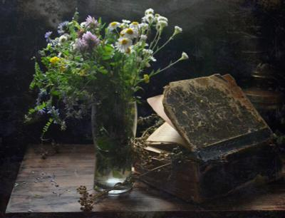 Летний этюд лето цветы книга лампа