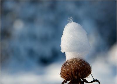 Корона снежинки