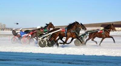 Золото Алтая кони скачки соревнования заезд