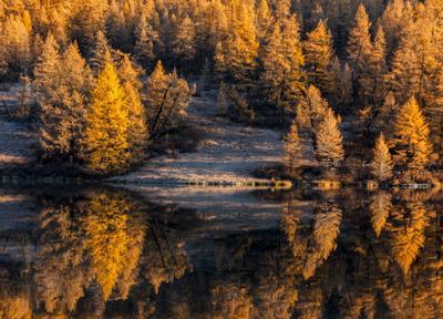 О том, как осень золотая в зеркало смотрела ...